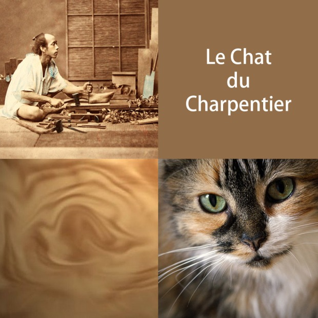 carpenter-cat-fr